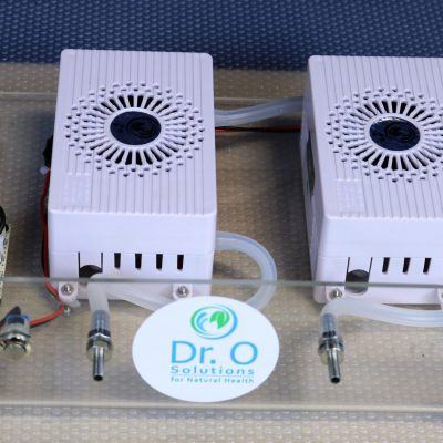 Ozone Generator Food Grade  for Oil - Air - Water, High Output 1.5 g/h (USA power supply)